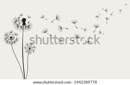 Dandelions on the cream background. Vector dandelion.Card with abstract flowers, dandelions
