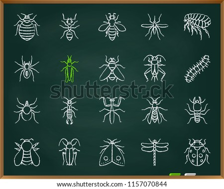 Hand Drawn Bed Collection Vector Download Free Vector Art Stock