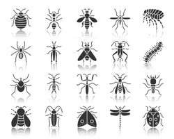 Danger Insect silhouette icons set. Monochrome web sign kit of bugs. Beetle pictogram collection includes mite wasp, gnat mosquito. Simple vector black symbol. Danger Insect shape icon with reflection