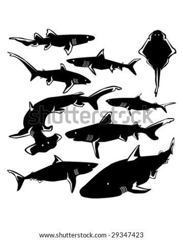 Dangerous sharks in vector silhouette with stylized illustration