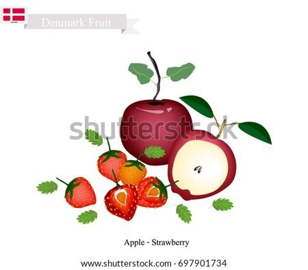 danish fruit  illustration of