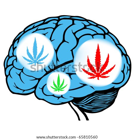 Brain On Marijuana Clip Art