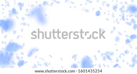 Dark blue flower petals falling down. Interesting romantic flowers vignette. Flying petal on white wide background. Love, romance concept. Dramatic wedding invitation.