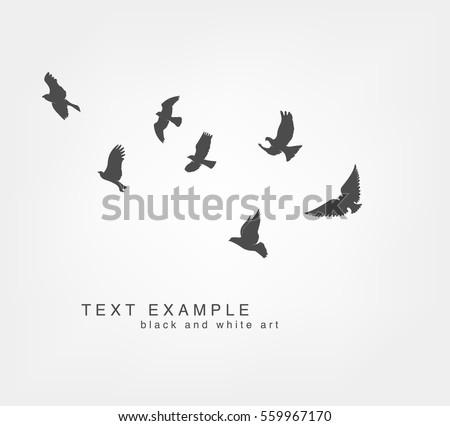 dark figures flying birds on