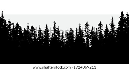 dark forest natural abstract