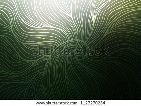 stock-vector-dark-green-vector-natural-elegant-background-colorful-abstract-illustration-with-lines-in-asian