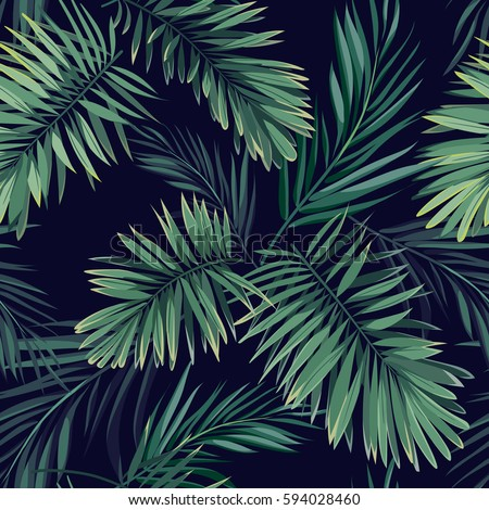 dark tropical background with