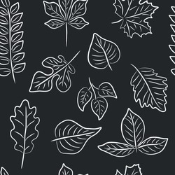 Dark vector seamless pattern with white contour leaves. Collection of hand drawn leaves Black-white vector illustration.