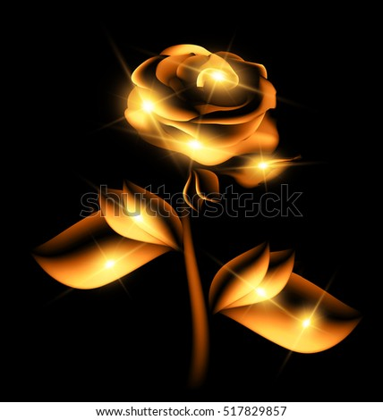 darkness and golden fairy flower