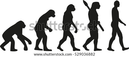 darwin evolution of human