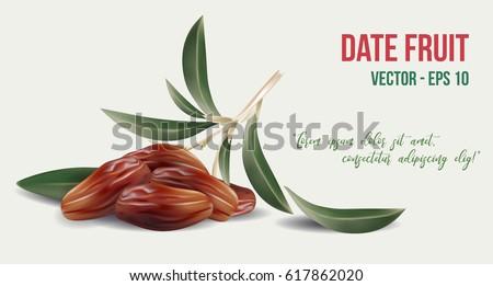 Dates fruit with olive leaves on white background. Food for symbolizing Ramadan.