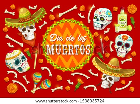Day of the Dead sugar skulls vector design of Mexican Dia de los Muertos. Skulls and bones of skeleton with marigold flowers, musical festival sombrero and maracas, tequila, mustaches and candles
