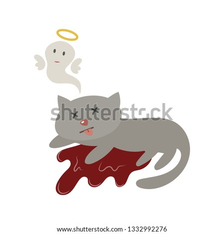 dead cat with blood vector