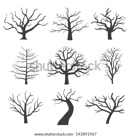 dead tree silhouettes dying