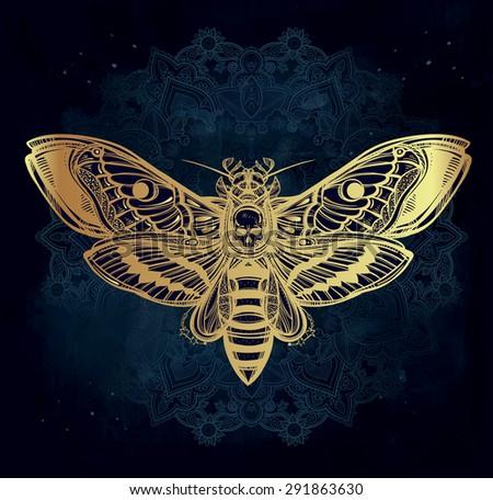 death's head hawk moth with