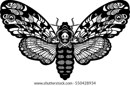 deaths head hawk moth butterfly