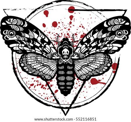 deaths head hawk moth butterfly