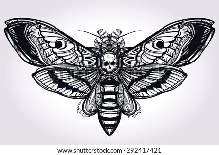 deaths head hawk moth hand
