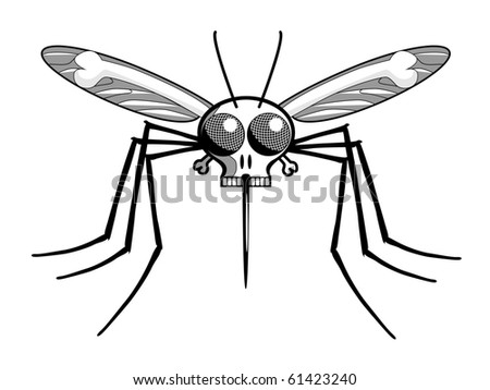 Deaths Head Mosquito : Shutterstock