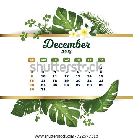 december 2018 tropical
