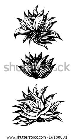 Decoration Flower. Design Elements. Vector Illustration - 16188091