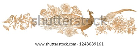 Decoration with birds and flowers. Realistic hand drawing isolated. Peacock and peonies, pheasant and chrysanthemums, nightingale and garnet. Vector illustration. Gold and white. Vintage engraving.