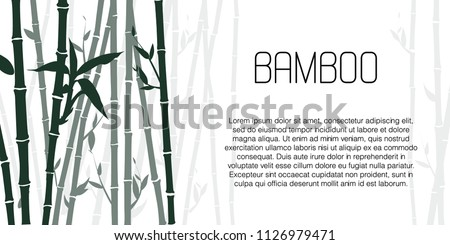 stock-vector-decorative-bamboo-branches-isolated-on-white-background