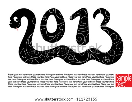 Decorative card with Snake the symbol 2013 year