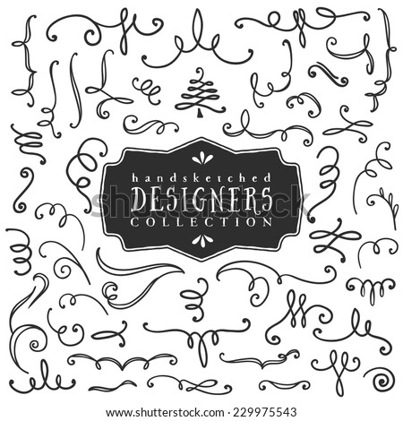 Decorative curls and swirls. Designers collection. Hand drawn illustration. Design elements.