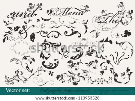 Decorative elements for  your design. Calligraphic vector