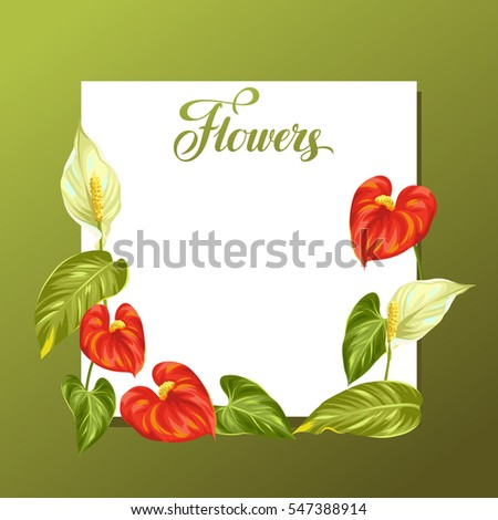 decorative frame with flowers