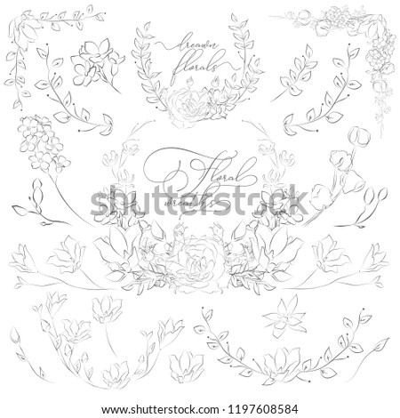 Decorative Hand Drawn Herbs, Plants and Flowers, Branches, Florals, Wreaths, Corners and Floristic Frames. Design Elements Line Drawing Vector Illustration. Linear