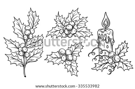 decorative  holly branches and