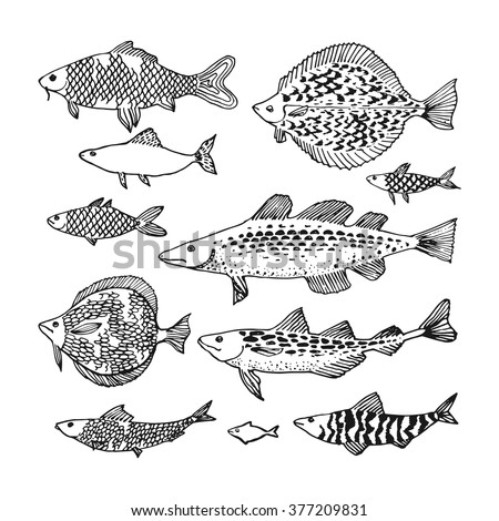 decorative ocean fish set