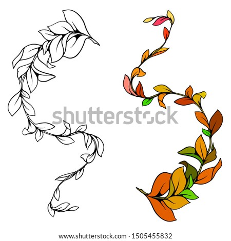 Decorative ornament with leaves. Vector decorative branch.