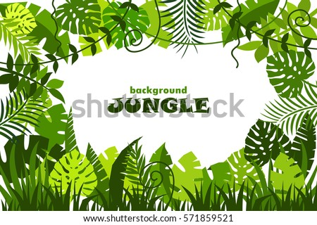 decorative tropical jungle background. vector illustration