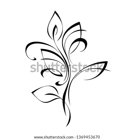 decorative twig with leaves in black lines on a white background