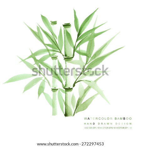 decorative watercolor bamboo