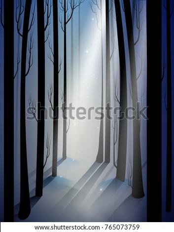 deep fairy frosty winter forest