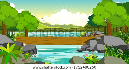 deep forest river wild