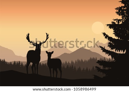 deer and hind in a mountain
