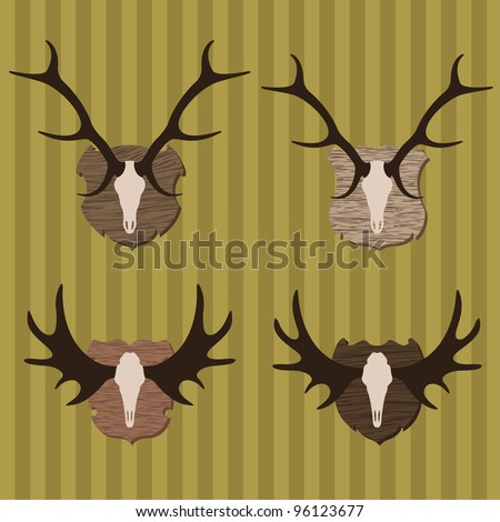 Deer and moose horns hunting trophy illustration collection background vector