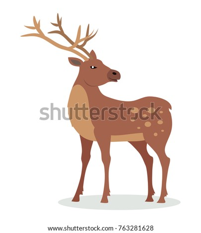 Deer cartoon character. Deer male flat vector isolated on white background. North America and Eurasia fauna. Deer icon. Animal illustration for zoo ad, nature concept, children book illustrating