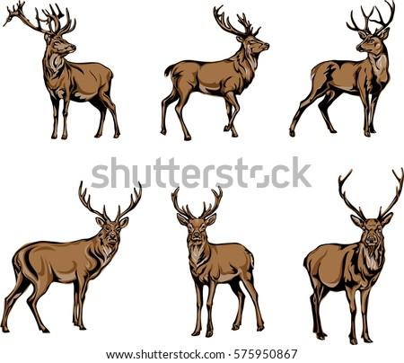 stock-vector-deer-deer-figure-vector-illustration-black-color-silhouette-stamp