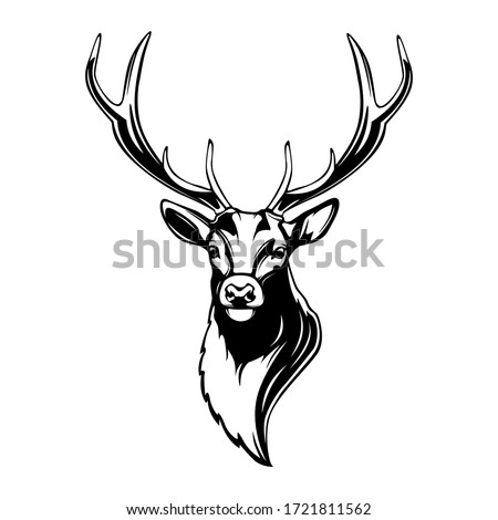 Deer head. Reindeer head isolated vector illustration. Wild animal. Hunting logo. Foto stock ©