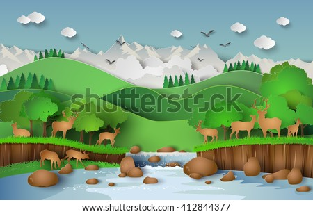 deer in the forest with a