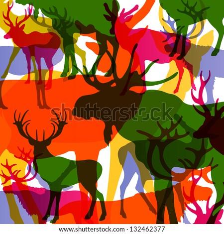 deer  moose and mountain sheep