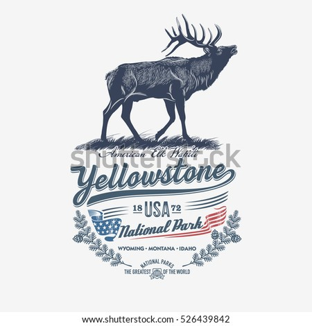 deer  national park yellowstone