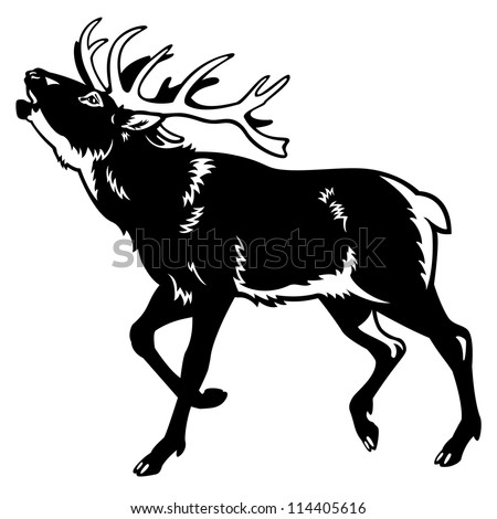 Deer illustration black and white - photo#12