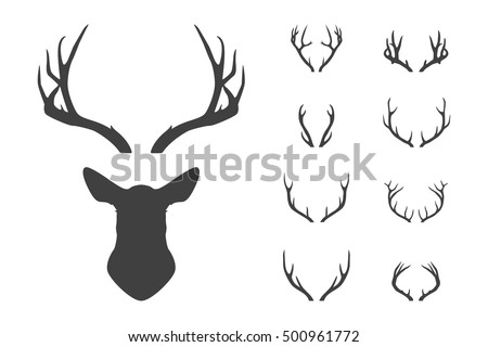 Stock Photo Deer's head and antlers set. Design elements of deer. Vector EPS8 illustration.